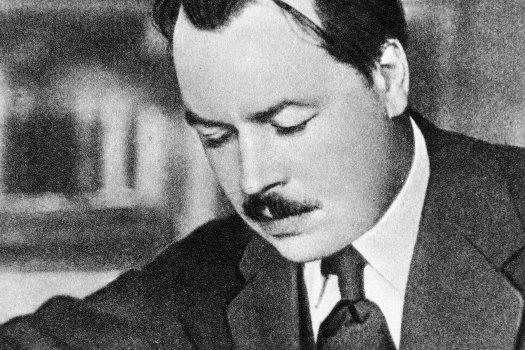 Николай Иванович Вавилов руски ботаник, един от най-известните генетици от началото на 20 век.