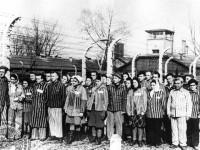 Група френски затворници от концентрационния лагер Аушвиц ( Освиенцим ) , освободени от Червената армия Снимка: Държавният архив на Руската федерация