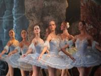 Имперският руски балет показа ненадмината красота и съвършенство