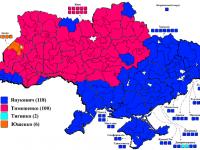 Президентските избори в Украйна (2010) Снимка: Wikipedia