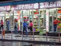 Холандските земеделци: За производителите и търговците на цветя е важен руският пазар