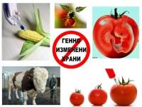 Русия казва Не на ГМО семената