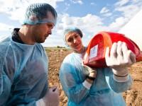 КПРФ внесе законопроект за разпределяне на забранените за внос храни сред нуждаещите се