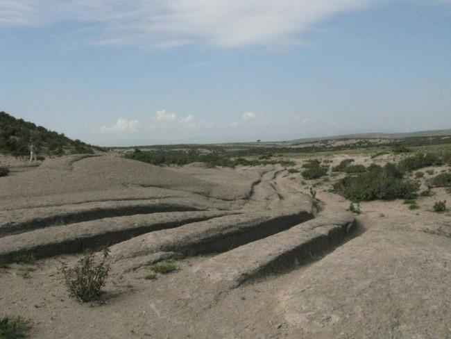 Древна цивилизация карала гигантски коли преди 14 млн. години