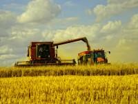 Русия притиска САЩ на пазара на пшеница