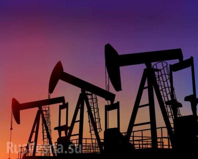 Петрол и природен газ осигуряват 98% от печалбите на компаниите в Русия
