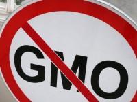 Руското правителство ще обяви за незаконни всички ГМО хранителни продукти
