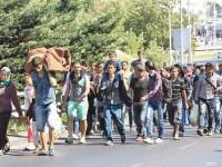 Над 60 милиона бежанци търсят убежище