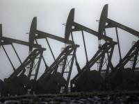 """The Telegraph: Саудитска Арабия рискува да разруши ОПЕК и да подхрани """"Ислямска държава"""""""