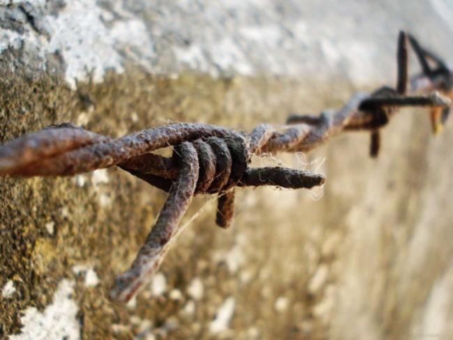 """Велика украинска стена"""