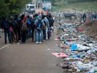 """Словения призова балканските страни да """"регулират и намалят притока на бежанци"""""""