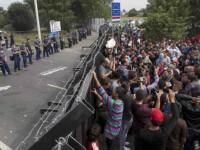 ЕС предлага създаването на още приемни центрове за бежанци в Балканските страни