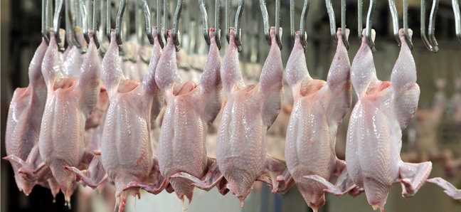 ЕС разреши вноса на птиче месо от Русия