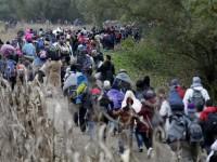 Австрийците: Искаме ограда и контрол на границите срещу мигрантите