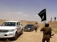 WT: Китай може да се присъедини в борбата срещу ИД