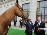 Путин подари кон на краля на Бахрейн