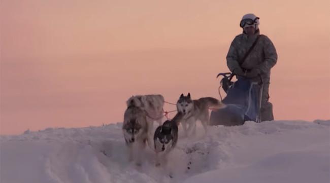 Руски войници тренират с хъскита и северни елени в Арктика