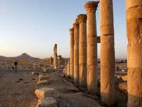 ВКС на РФ са нанесли удари по 146 обекта на терористите в района на Палмира в Сирия