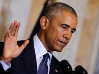 """Датска младежка партия нарече Обама """"бездарно негро"""" в песен, изпълнена пред американския посланик"""