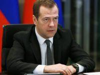 """Медведев: Русия ще продължи да развива """"зелена"""" икономика"""