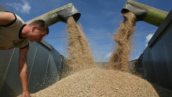 Русия ограничава вноса на фуражи от Аржентина, Бразилия, Германия и Китай, заради ГМО