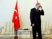 Защо на Русия и Турция ще им бъде трудно да са стратегически партньори