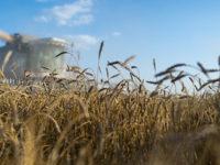 """""""Шпигел"""": Русия печели повече от селско стопанство, отколкото от оръжие"""
