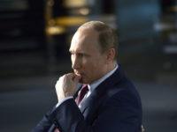 Американска писателка: Руснаците никога не са изпитвали такава гордост от страната си, както при Путин