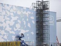 Край Александрия ще строят АЕЦ с руско участие