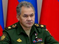 Сергей Шойгу: Русия и Сърбия са заинтересовани от развитие на военното сътрудничество