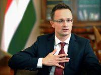 Унгарският министър на външните работи Петер Сиярто