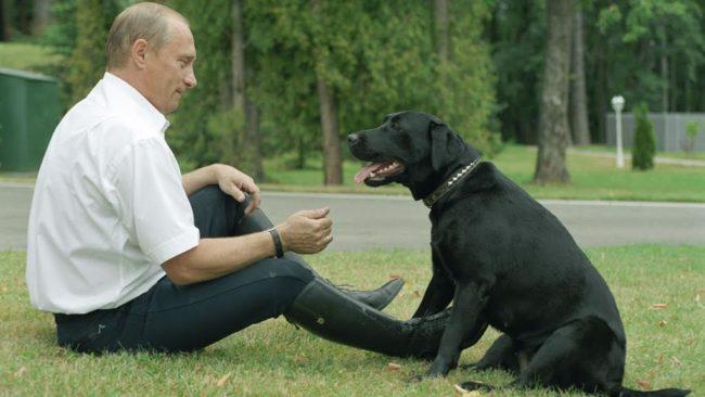 Как минават сутрините на Владимир Путин?