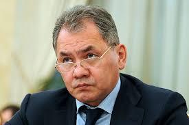 Сергей Шойгу разчита на задълбочаването на военното и военнотехническото сътрудничество между Русия и Сърбия