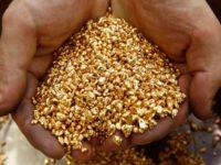 Руснаците добили 3 т повече злато в Колима